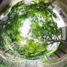 世田谷区の岡本隧道でシータZ #theta360