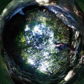 西武林道の森の中  屋久島を自由に旅する GREEN MOUNT  #theta360