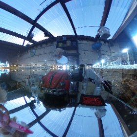 Barbie captured landing in Galway | Woodquay, April 2nd 2018 #firefly3d #Galway360 #theta360