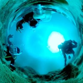 2021/02/13 福浦、テーブルサンゴ #padi #diving #フリッパーダイブセンター #福浦 #theta #theta_padi #theta360 #群馬 #伊勢崎 #ダイビングショップ #ダイビングスクール #ライセンス取得