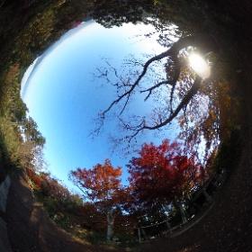 [絶景360]もみじ台 ほかにも、いろいろな絶景ポイントで撮影した 360°パノラマ写真(全天球写真)を公開しています。『事例s』サイトの「絶景360」(http://jilays.com/zek360-index)からご覧いただけます。
