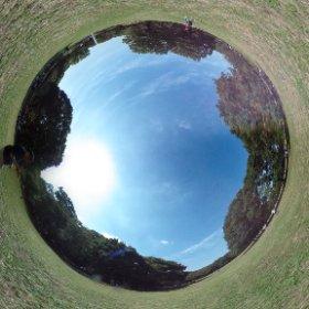 Yoyogi Park 01
