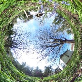 Woods Mill, Sussex Wildlife Trust