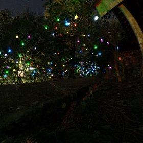 道後公園のライトアップ。いろんなスマイルが描かれたシェードが、色とりどりに輝いてます。キレイだねぇ。