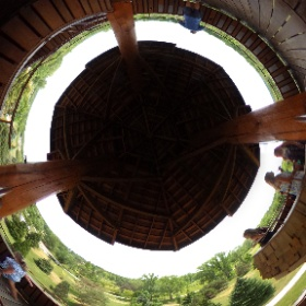 46-foot Tree Tower a must-see stop at Cox Arboretum #theta360