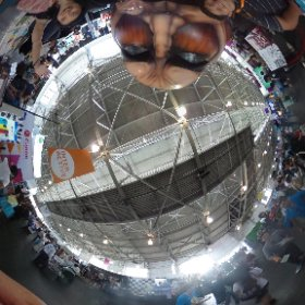 @Raiken198 #CaptureTheTitan #theta360 #JPopSummit2015 kodanshacomics.com