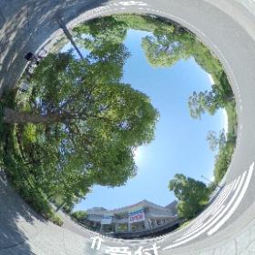 TAU Open Campus 2017