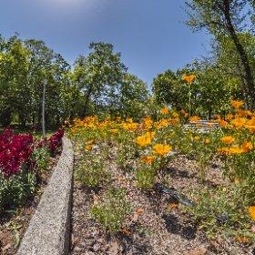 The Flower Garden #thetaz1 #DFE #HDR9 developed in Lightroom Classic #theta360