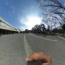【シータ遊び心No@001ササキをさがせ】  名城公園トナリノあたりで撮影。 #theta360
