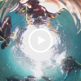 2021/04/10 浮島 #padi #diving #フリッパーダイブセンター #浮島 #theta #theta_padi #theta360 #群馬 #伊勢崎 #ダイビングショップ #ダイビングスクール #ライセンス取得 #padiライフ