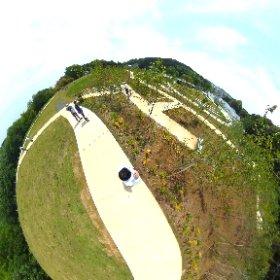 町田薬師池公園の拡張エリア「四季彩の杜西園」 #theta360