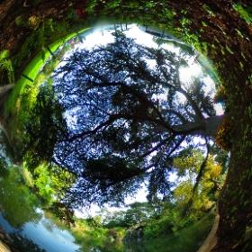 La Grande Cascade Bois de Boulogne - Paris #theta360 #theta360fr