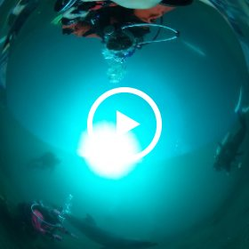2019/03/12 伊東ドルフィンファンタジー #padi #diving #フリッパーダイブセンター #伊東 #theta #theta_padi #theta360