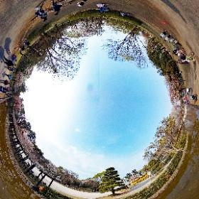 小金井公園 江戸東京たてもの園前4