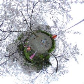和歌山有田市ウエノ公園で遊ぶ子供達 #theta360