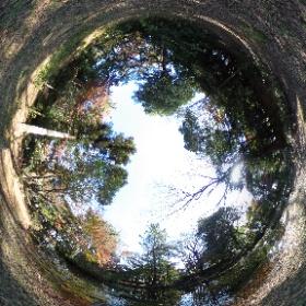 3020/12/1、石神井公園 記念庭園より #theta360