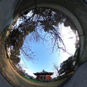 #興福寺 #北円堂