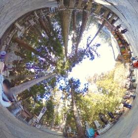 高野山奥之院、弘法大師御廟への橋の前から #theta360