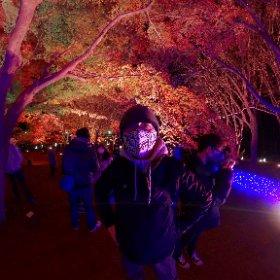 森林公園「紅葉見ナイト」2020 #momiji3d #theta360