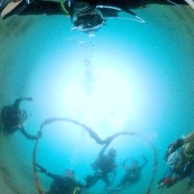 2021/07/27 獅子浜 #ハート #padi #diving #フリッパーダイブセンター #大瀬崎 #theta #theta_padi #theta360 #群馬 #伊勢崎 #ダイビングショップ #ダイビングスクール #ライセンス取得 #padiライフ
