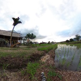 Denge, a small Indonesian village on the way to Wae Rebo #flores #indonesia #theta360
