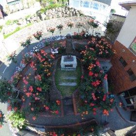 アンネのバラ開花状況5月18日  花びらをお風呂に浮かべ、ほのかな香りと共にゴージャスな心地でした。とのこと。かごの中の花がらは自由にお持ち帰りいただけます。 #アンネのバラ  #theta360