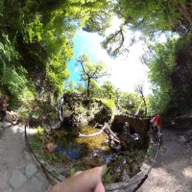 National Trust Aira Force Waterfall near Glenridding in the Lake District. #nationaltrust #waterfalls #lakedistrict #airaforce #360photography  #theta360 #theta360uk