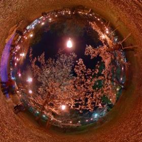 上田城の桜 #sakura3d  #theta360