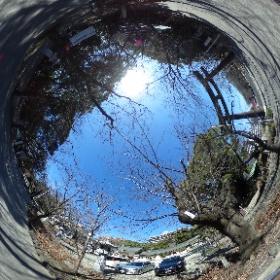 お昼やすみに愛知県護国神社で後厄のお祓いバッサバッサ。  神主さん。「おはらいにはイロイロな形があり、神社にくるのも1つだけど最も身近で実践できるお祓いは笑うこと。オハライとオワライは通ずる」。  そんな360度天球カメラで皆さんに笑みあれ! #theta360