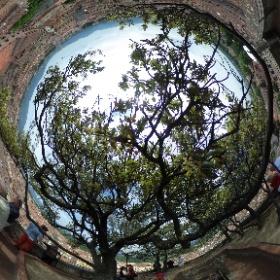 #lucca #360view garden above the town #travel #italy #theta360