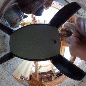新しいオモチャを衝動買いしてしまいました!。 我が家の薪ストーブに集まるキリとくるみです。