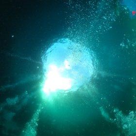 ダイビング堪能。そして海中にて全天球カメラデビュー! #theta360