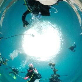 2021/07/13 雲見 #安全停止 #padi #diving #フリッパーダイブセンター #大瀬崎 #theta #theta_padi #theta360 #群馬 #伊勢崎 #ダイビングショップ #ダイビングスクール #ライセンス取得 #padiライフ
