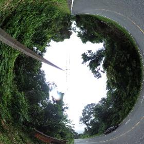 ดงกระทิง เขาใหญ่ | http://www.relaxzy.com สถานที่เที่ยวแนะนำในเขาใหญ่. 'เขาใหญ่' เมืองท่องเที่ยวในวันหยุดพักผ่อนของคนเมือง เขาใหญ่ ที่พักเขาใหญ่ราคาถูก 20 จุดท่องเที่ยวเส้นทางเขาใหญ่ ปากช่อง - ที่เที่ยวยอดนิยมเขาใหญ่-ปากช่อง เขาใหญ่ รีสอร์ท  #theta360