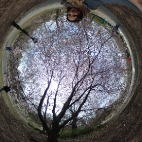 Spring in New York City #theta360