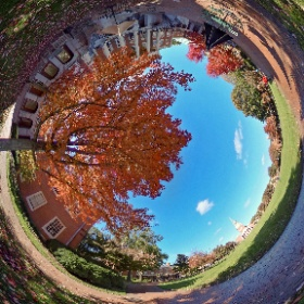 A beautiful fall day on Hearn Plaza at Wake Forest University.
