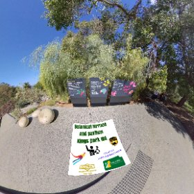 Botanic terrace Pavilion centre piece of Botancial gardens in Kings Park Perth city West Australia, with paths trails, lawns https://kingsparkwa.com/BotanicTcePavilion BEST HASHTAGS  #butterfly3d #KingsParkWA   #PerthCity #theta360