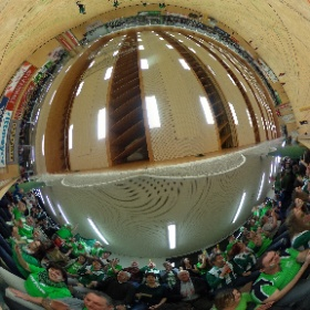Faustball Final 3 2016 #theta360
