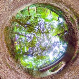 唐沢山の神橋を堀側から #theta360