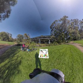 Zamia Path nature trail Kings Park Botanical Gardens Perth WA, 1700m winding thru natural bushland, elevation change of 40m, tour page https://linkfox.io/MBcRO BEST HASHTAGS  #ZamiaPath  #KingsParkWA   #PerthCity  #butterfly3d #theta360