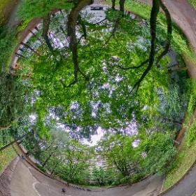 公園の緑 手持ちHDR/THETA Z1 + RUP-V40R #theta360