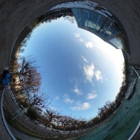 #Wilhelma #Stuttgart #Seelöwen #Park #theta360 #theta360de
