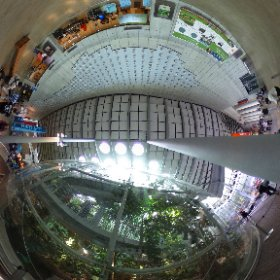 California Academy of Sciences, SF CA #theta360