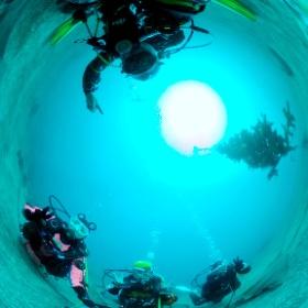 2021/02/07 江之浦 #padi #diving #フリッパーダイブセンター #江之浦 #theta #theta_padi #theta360 #群馬 #伊勢崎 #ダイビングショップ #ダイビングスクール #ライセンス取得 #ドラえもん