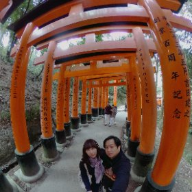 #momiji3d #Kyoto