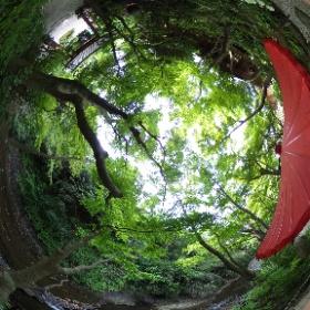 Kamakura Ichijo Ekansanso 鎌倉の一条恵観山荘 ドイツ式カイロプラクティック逗子整体院 SINCE 1994 www.zushi-seitai.com