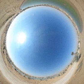Swan Lake at Al Qudra Lakes in #Dubai. #theta360