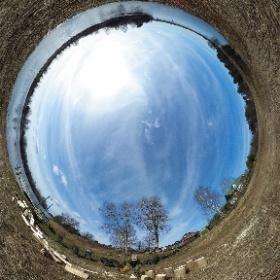 2. Паводком принесло дерево. Распил на дрова, теперь колю. Река Молога. Тверская область. 7 апреля 2020 г.