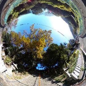 清滝街道・国中神社の紅(黄)葉 #紅葉 #黄葉 #YAMAP #ヤマレコ #theta360