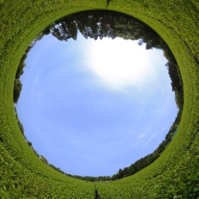 温暖な気候と良質な土で、心をこめて作り上げた 袖ケ浦の美味しい新茶ができました(*^_^*) 緑豊かな景色も絶景です☆